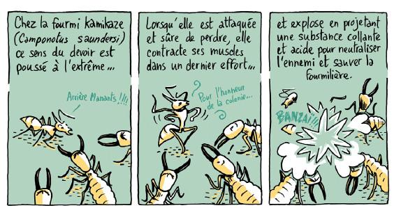 """Résultat de recherche d'images pour """"la guerre des fourmis BD"""""""